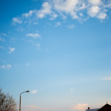 Dewy sunset