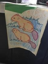 Beavers everywhere